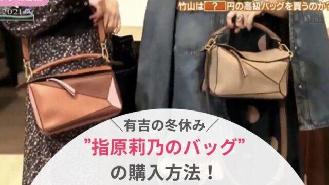 【有吉の冬休み】指原莉乃のLOEWEパズルバッグの購入方法は?ロエベ