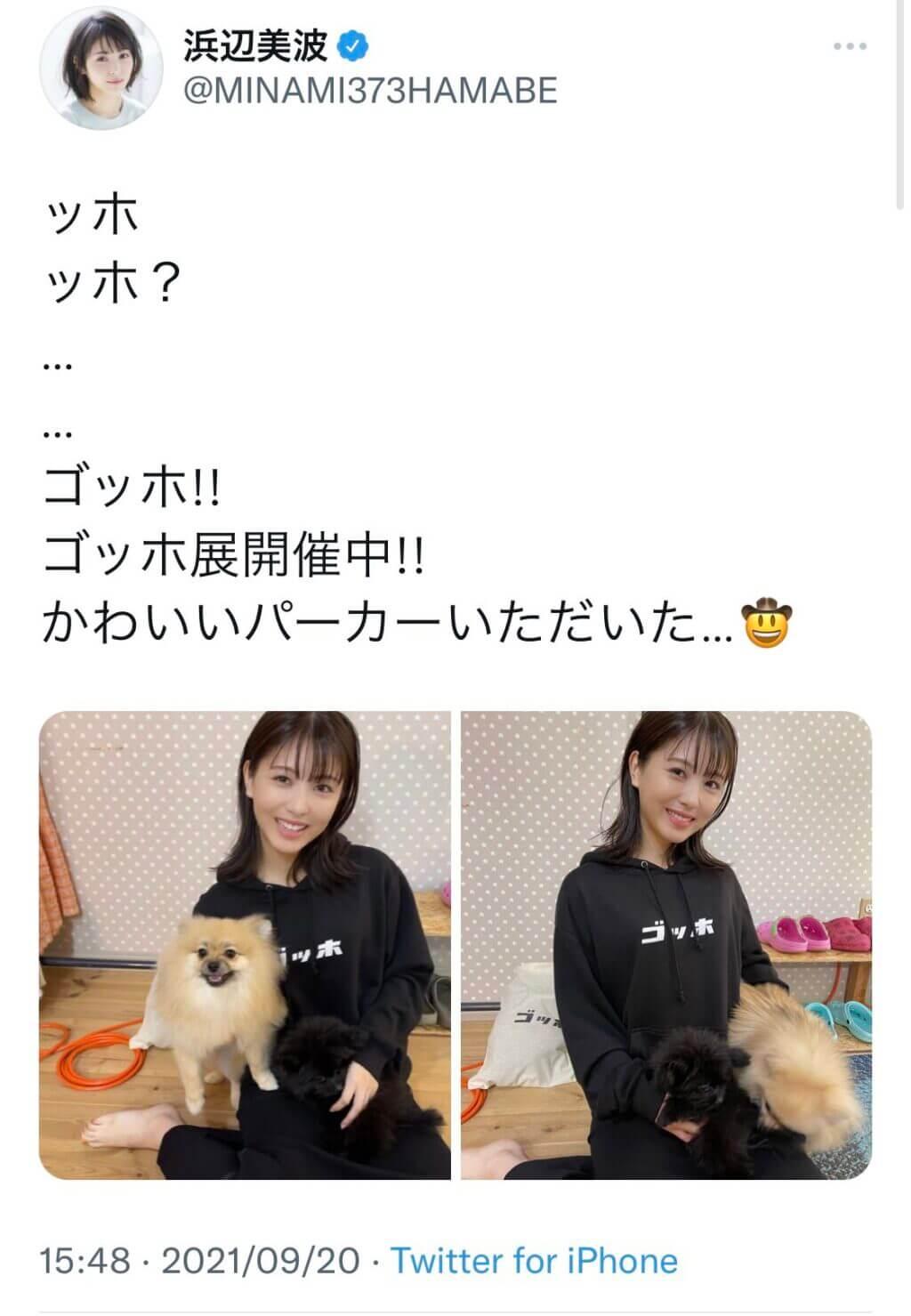 浜辺美波と彼氏・Ryugaの匂わせ疑惑!愛犬が一緒?